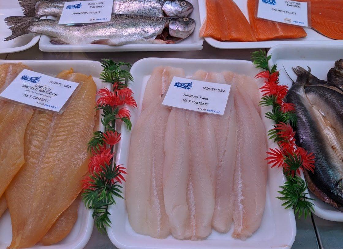 Playground Earth   Fish Lover's Dilemma   Fresh Haddock