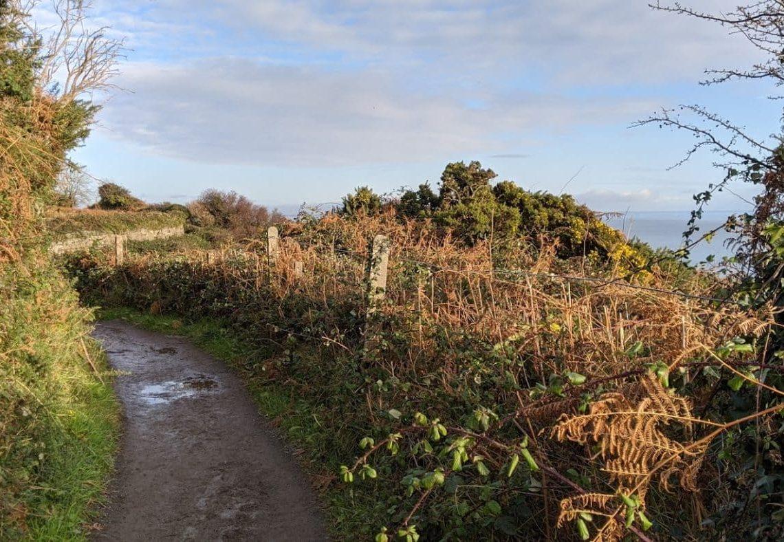 Playground Earth | Bray's Cliff Walk