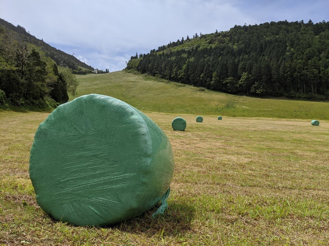Playground Earth l Rolls of Hay