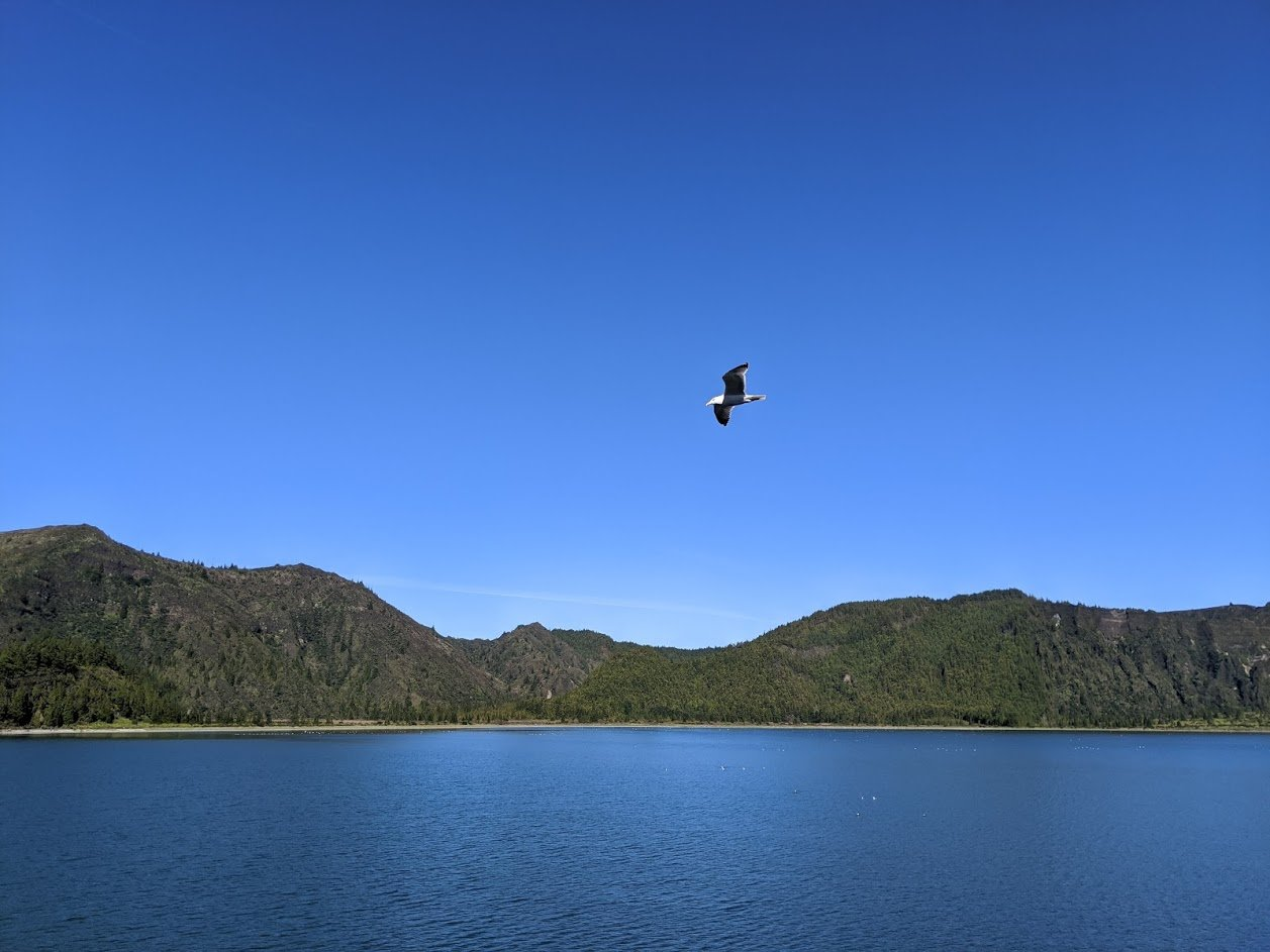 Playground Earth | Lagoa do Fogo | Time to head back