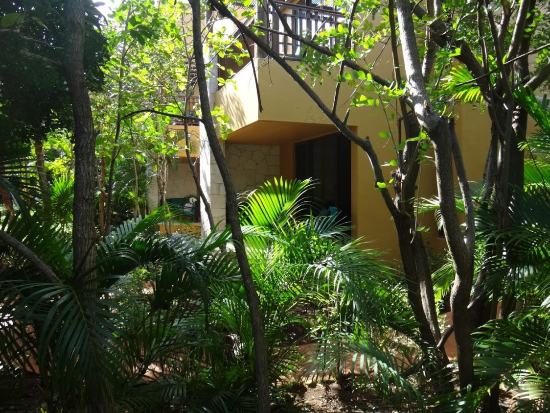 Playground Earth | Our room in the tropical forest