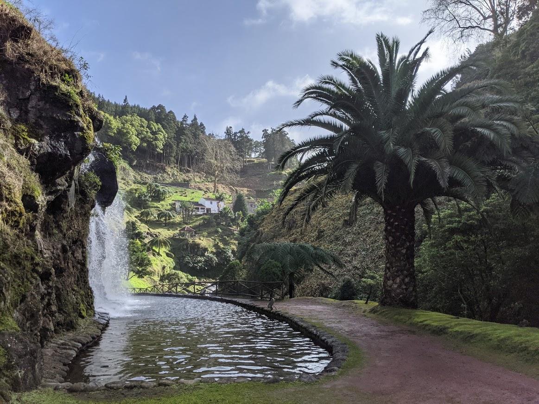 PGE l Ribeira dos Caldeirões l Lower falls with giant palm