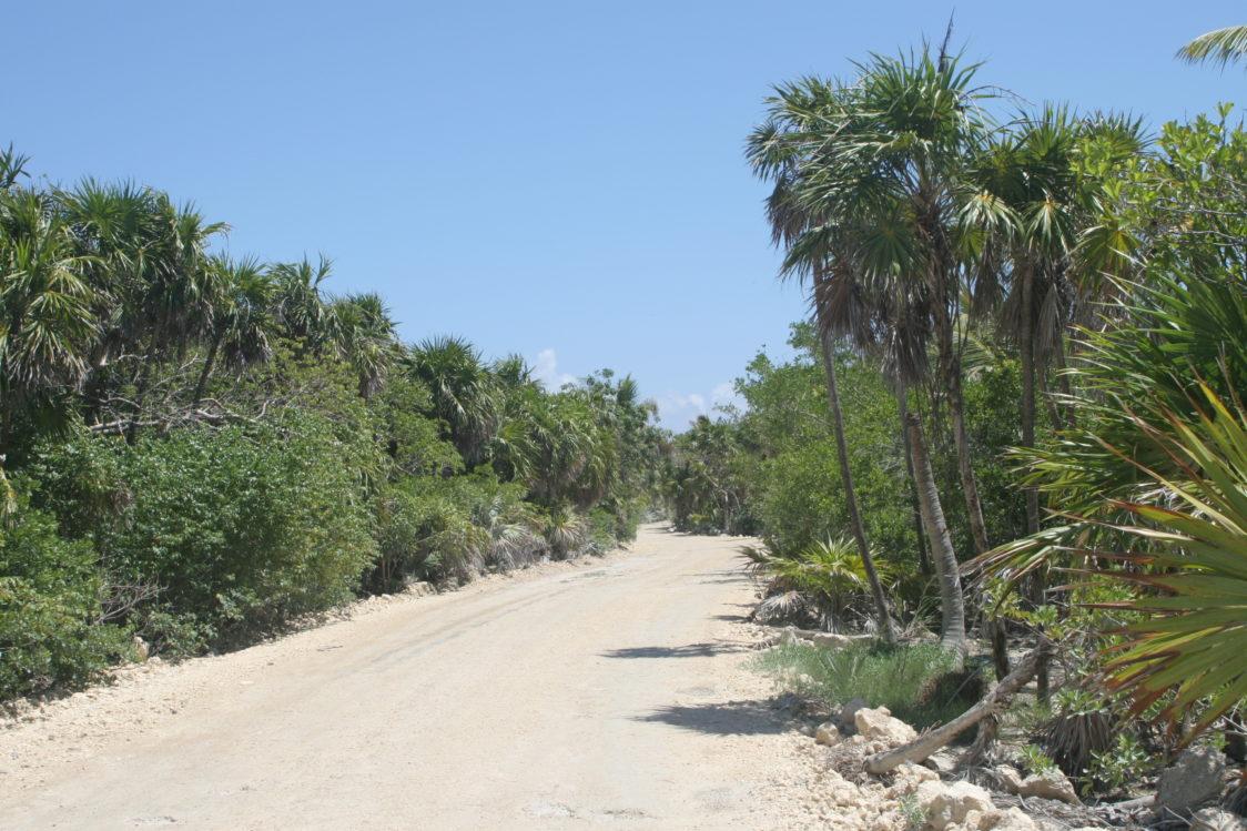 PGE l The dusty road to Punta Allen