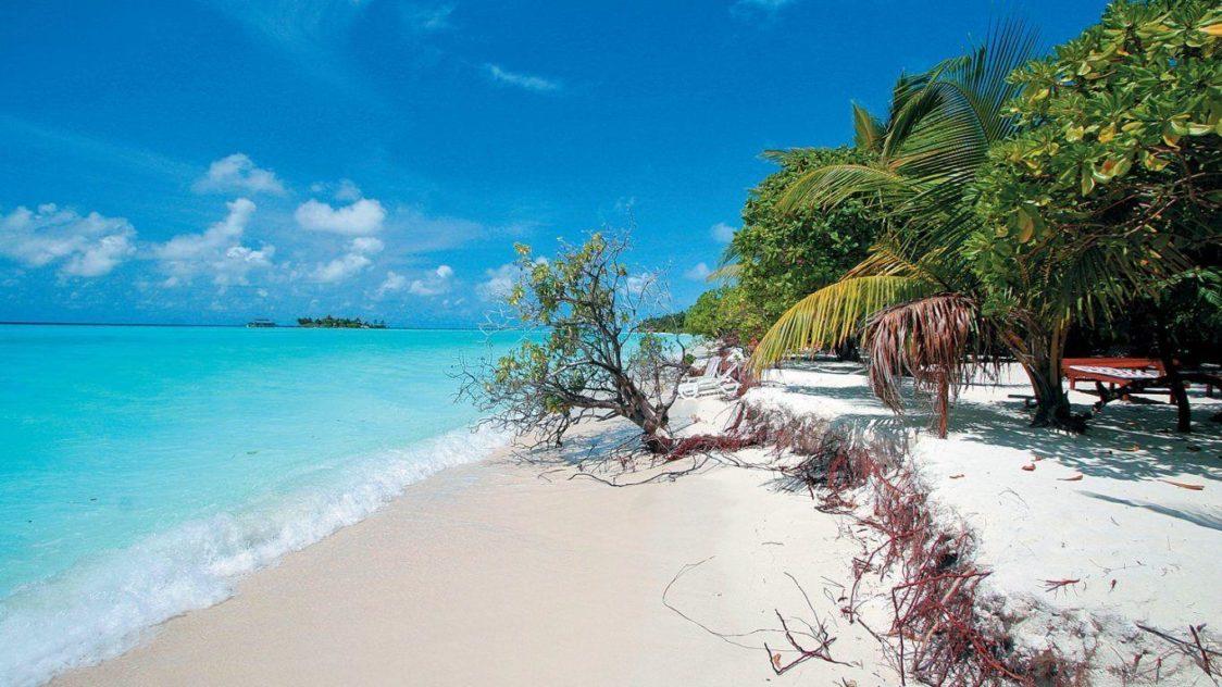 PGE l Punta Allen l Pristine beach