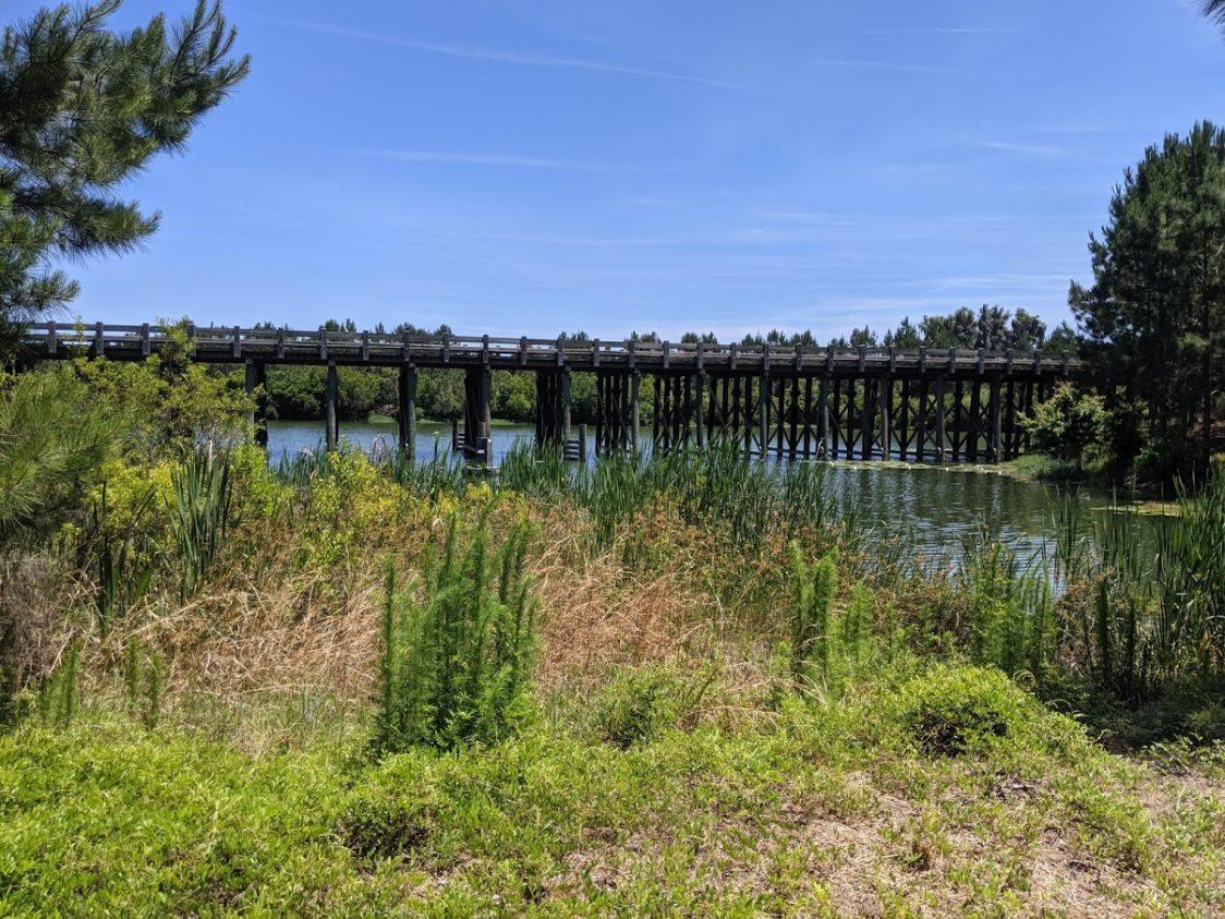 PGE l The Magic of Waterways l Bridge over the lagoon